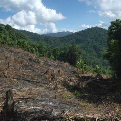Habitat degradation in Ranobe, Madagascar
