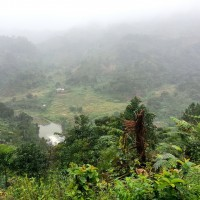 View of the valley in the mist at Ranomafana. Photo by Sabrina Szeto.
