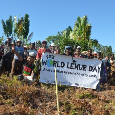 Madagascar Biodiversity Partnership plants trees with the community for World Lemur Day.
