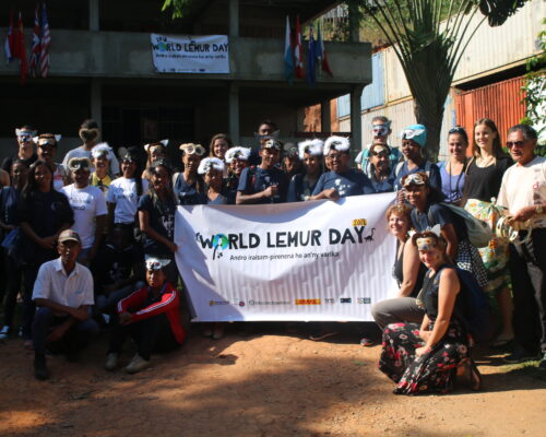 World Lemur Day in KIANJAVATO 2018