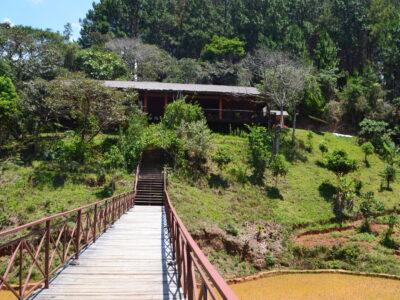 The bridge to Saha Forest Camp. All photos by Lynne Venart.