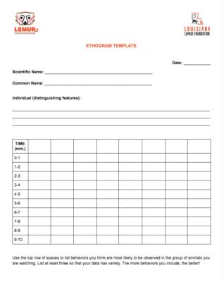 Ethogram template for documenting lemur behavior