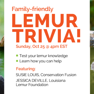 Family-friendly lemur trivia event flyer