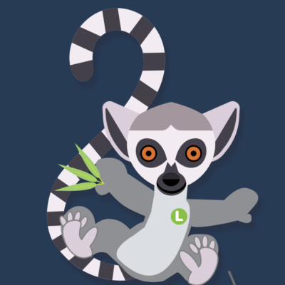 Lemur Bounce activity