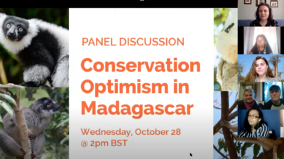Screenshot of Conservation Optimism Panel Discussion