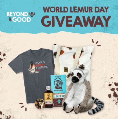 Beyond Good World Lemur Day Giveaway