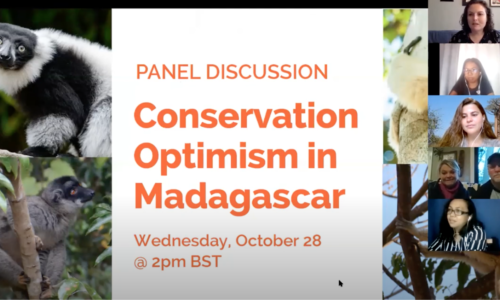 LCN Conservation Optimism Panel Discussion