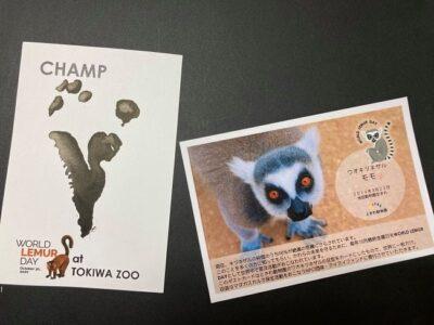 Tokiwa Zoo postcards