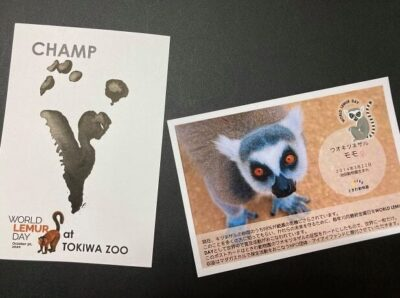 Tokiwa Zoo postcards