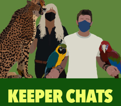 Keeper Chats Podcast