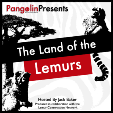 New Season of Conservation Podcast to Focus on Lemurs and Madagascar